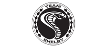 Team-Shelby